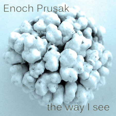 the way i see - enoch prusak